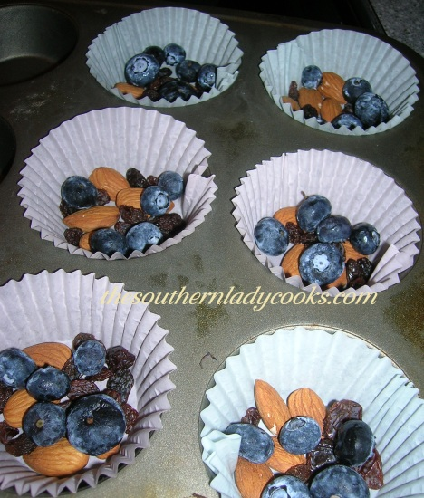 Chocolate Blueberry Clusters